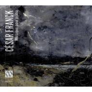 ピアノのための作品集〜ピアノ協奏曲第2番、ピアノ五重奏曲、ヴァイオリン・ソナタ、他 エイデン、ドヌー&RTBF新響、ハーディ、他(5CD)