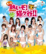もっと熱いぞ!猫ヶ谷!!Blu-ray-BOXII