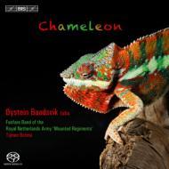 カメレオン〜チューバとファンファーレ・バンドの音楽 ボーズヴィーク、オランダ王立陸軍軍楽隊
