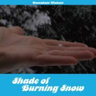 Shade Of Burning Snow
