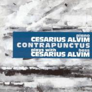 Contrapunctus