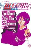 BLEACH The Death Save The Strawberry JUMP j BOOKS