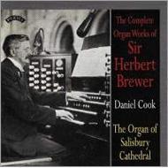 Comp.organ Works: Daniel Cook