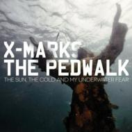 Sun The Cold & My Underwater Fear