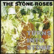 Turns Into Stone (180gr)
