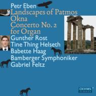 オルガン協奏曲第2番、シャガールの窓、パトモスの風景、他 G.ロスト、フェルツ&バンベルク響