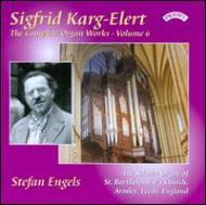 Complete Organ Works Vol.6: Stefan Engels