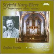 Complete Organ Works Vol.7: Stefan Engels