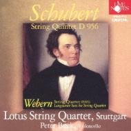String Quintet: Lotus Sq P.buck(Vc)+webern