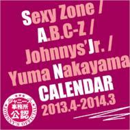 Sexy Zone / A.B.C-Z / ジャニーズJr./ 中山優馬 カレンダー 2013/4-2014/3