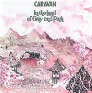 In The Land Of Grey & Pink (+bonus)