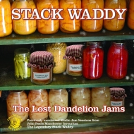 Lost Dandelion Jams