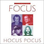 Hocus Pocus -The Best Of (2LP)(180グラム重量盤)