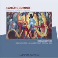 Cantate Domino: Kalousek / Chorus Ars Brunensis Marek Pala (Org)