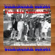 Prevalent Visionaries: The History Of Birmingham Sunday