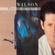 Brian Wilson  (180グラム重量盤レコード)