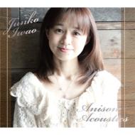 Anison Acoustics