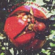 エンケンロックベスト盤1996〜2012