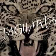 JAGUAR'13