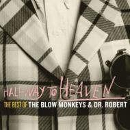 Halfway To Heaven: The Best Of The Blow Monkeys & Dr Robert
