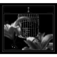 黒と影 (+DVD)【初回生産限定盤 ※特殊仕様: 豪華三方背ボックス入り/デジパック仕様/ブックレット封入】