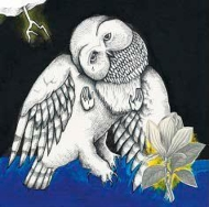 Magnolia Electric Co (10 Year Anniversary Edition)