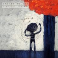 Steven Wilson/Drive Home (+dvd)