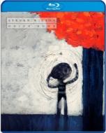 Steven Wilson/Drive Home (+cd)