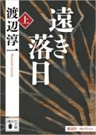 遠き落日 渡辺淳一セレクション 上 講談社文庫