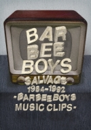 Salvage 1984-1992 Barbee Boys Music Clips