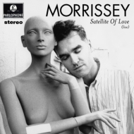 Satellite Of Love (12インチシングルレコード)