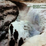 Porcupine (Hq Vinyl)