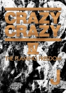 CRAZY CRAZY IV -THE FLAMING FREEDOM-(DVD2���g)