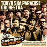 流れゆく世界の中で feat.MONGOL800 (+DVD)