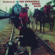 Return Of The Incredible Bongo Band (アナログレコード/Mr Bongo)
