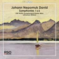 交響曲第1番、第6番 ヴィルトナー&ウィーン放送交響楽団