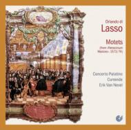 Motets: E.van Nevel / Concerto Palatino Currende