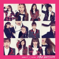 4th Mini Album: Pink Blossom