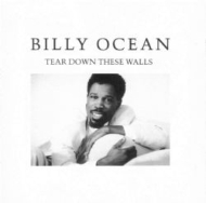 Tear Down These Walls (Expanded Edition)