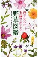 色で見わけ五感で楽しむ野草図鑑