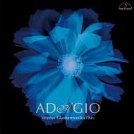Adagio-music For Glass Harmonica: The Vienna Glass Armonica Duo