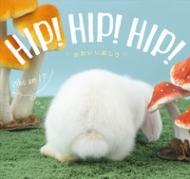 HMV&BOOKS online蜂巣文香/Hip! hip! hip!かわいいおしり