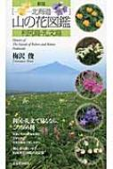 北海道山の花図鑑 利尻島・礼文島