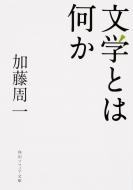文学とは何か 角川ソフィア文庫