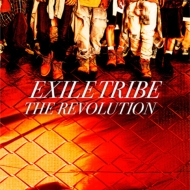 THE REVOLUTION (+DVD)