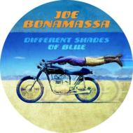 Joe Bonamassa/Different Shades Of Blue (Picture Disc)