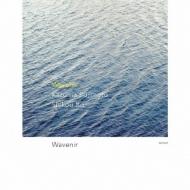 Wavenir