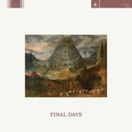 Final Days (+downloadcode)
