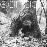 Canada (アナログレコード)