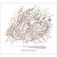 Uteruchesis